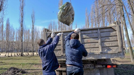 Воронежские власти организуют раздельный сбор мусора на субботнике 8 апреля