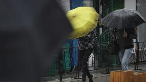 В выходные погода в Воронеже опередит календарь на месяц