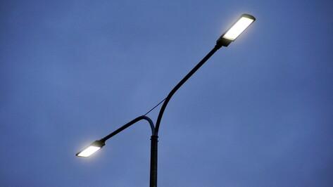 Благодаря энергосервисным контрактам обновили освещение в 17 районах Воронежской области