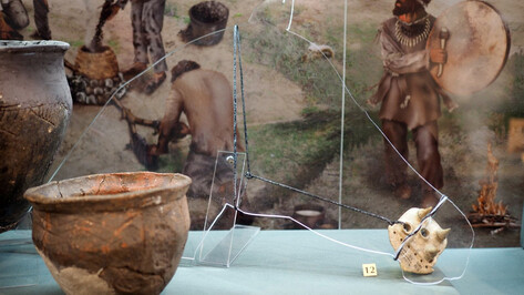 От неолита до бронзы. В Воронежском краеведческом музее выставили уникальные находки
