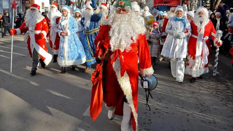 Гид РИА «Воронеж». Как культурно и активно провести выходные 21 и 22 декабря
