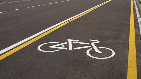 Строительство 4-километровой велодорожки в Воронеже начнется в ближайшее время