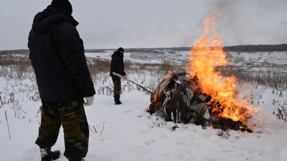Воронежские сотрудники ФСКН сожгли 65 кг наркотиков