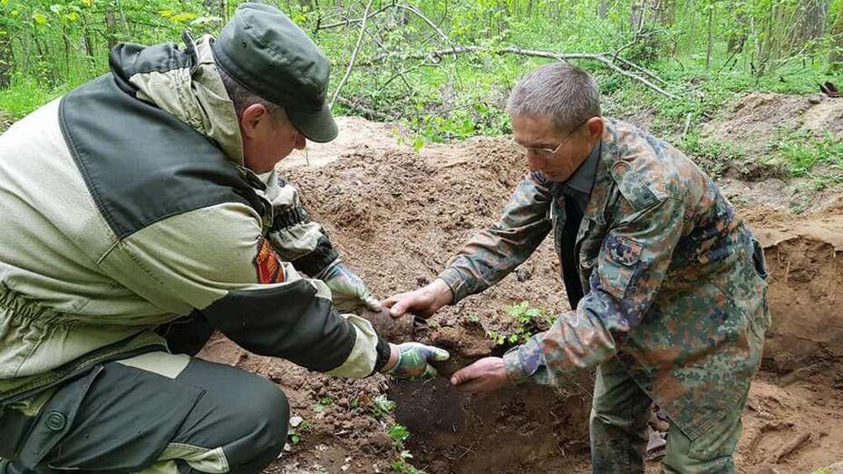 Поисковики попросили откликнуться родных красноармейца из воронежского села Гороховка