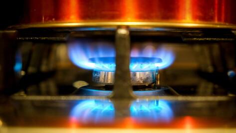 Воронежцы смогут подать заявку на бесплатную газификацию через «Госуслуги»