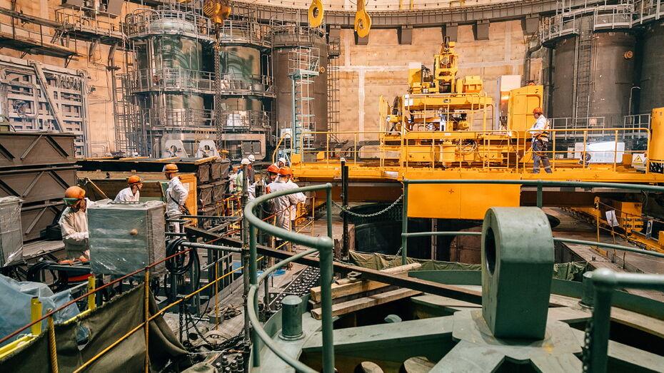 На энергоблоке Нововоронежской АЭС-2 начали устанавливать имитаторы ТВС