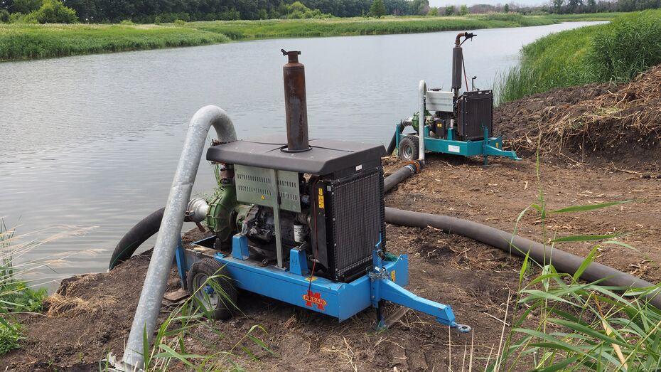 Воронежский департамент экологии взял на контроль ситуацию с откачкой воды из реки Красная