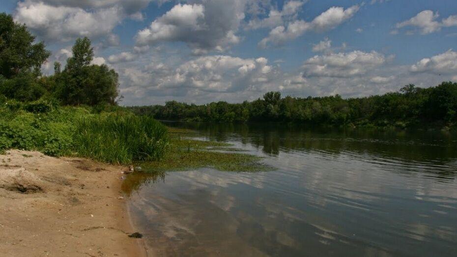 В Воронежской области 71-летний мужчина утонул в реке Дон