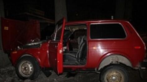 В Воронеже на Машмете «Нива» врезалась в дерево»: двое пострадавших