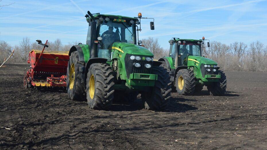 Калачеевские аграрии начали сев зерновых