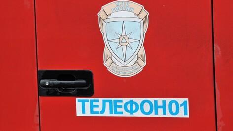 В Репьевском районе сгорели автомобиль и гараж