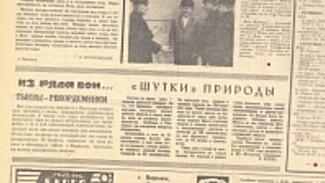 Взгляд из прошлого: война в Чечне, необычные услуги медвытрезвителей и тыква-гигант из Павловска
