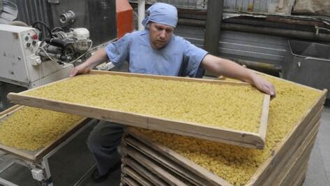 Воронежская область потратит почти 1,9 млн рублей на развитие малого бизнеса