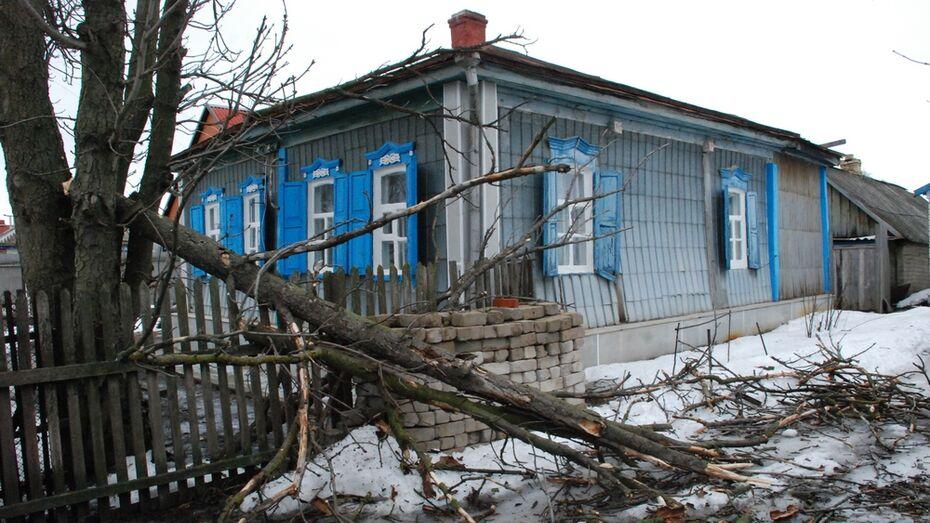 В Кантемировке из-за сильного ветра произошло 5 порывов электросетей
