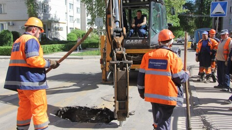 В Воронеже на «зебре» возле школы провалился асфальт