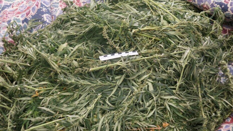 В Воронежской области в палате у пенсионера нашли марихуану