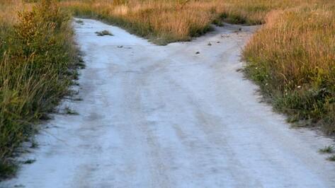 Школьникам запретили выезжать с экскурсиями за пределы Воронежской области