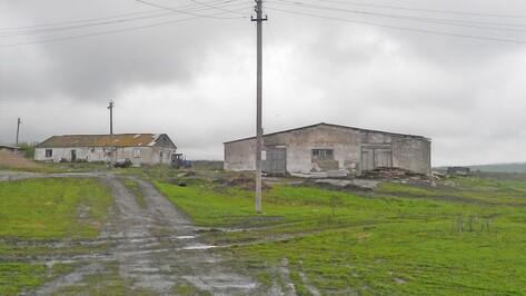 В Семилукском районе имущество муниципальной фермы продадут с аукциона