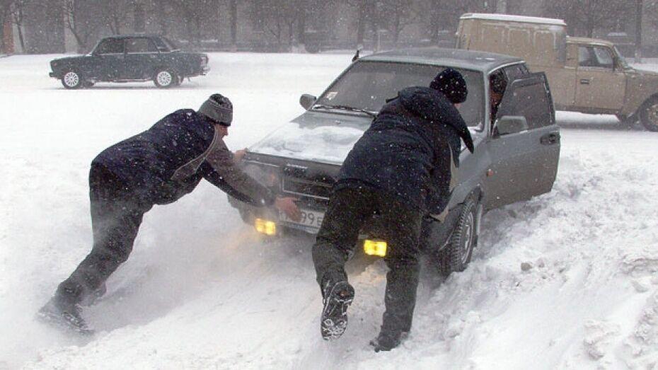 Спасатели предупредили жителей Воронежской области о метели и снежных заносах
