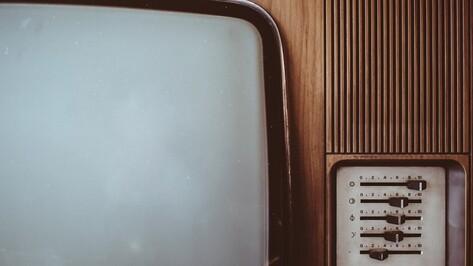 Под Воронежем мужчина получил 10 лет колонии за убийство подруги телевизором