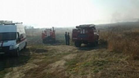 Пожарные из нескольких районов области прибыли в Борисоглебск на тушение ландшафтного пожара