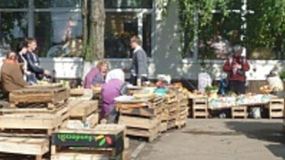 Сельскохозяйственные ярмарки пройдут в Воронеже 16 августа