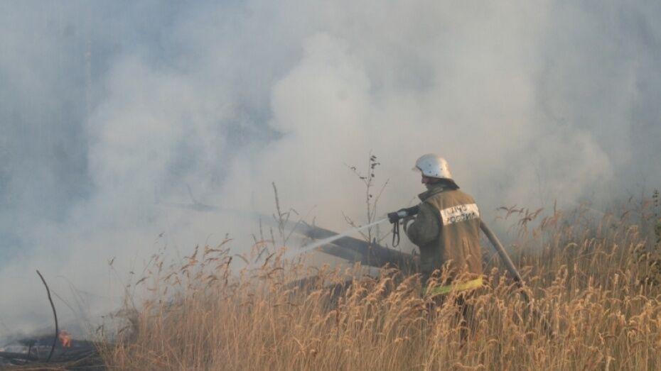 В Воронеже открыли пункт сбора помощи пострадавшим на пожарах в Ростове-на-Дону