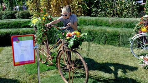 Выставка «Воронеж – город-сад 2015» соберет ландшафтных дизайнеров из стран СНГ