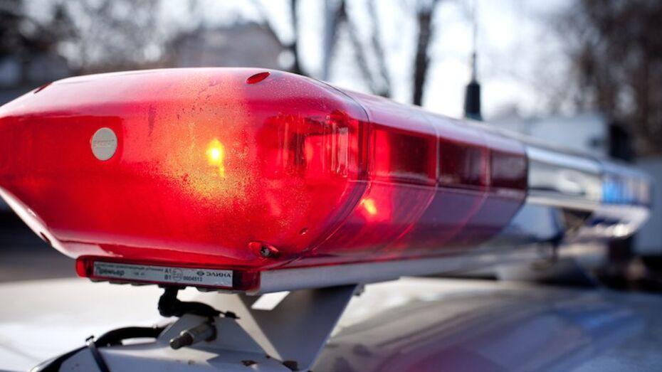 В Воронеже водитель попал под суд за нападение на сотрудника ГИБДД