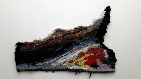 Воронежская художница откроет выставку вязаных сталактитов