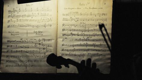 В воронежской библиотеке сыграют барочную музыку