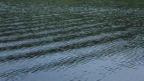 В Воронежской области в пруду утонул 15-летний парень