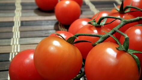Воронежский Роспотребнадзор вернул на Украину 20 т томатной пасты