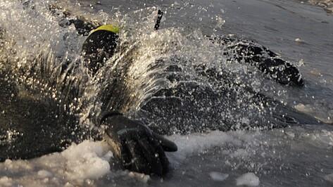 На Воронежском водохранилище утонул рыбак