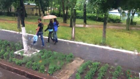 Дожди с грозами накроют Воронеж в субботу