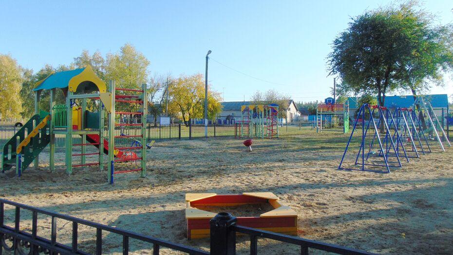 Активисты репьевского села Усть-Муравлянка установили на детской площадке спортоборудование