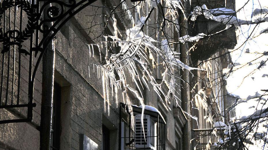 Суровое похолодание предсказали в Воронеже в выходные