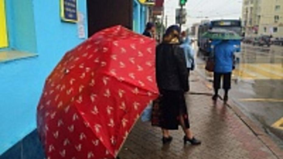 Новая порция дождей ждет Воронеж с четверга