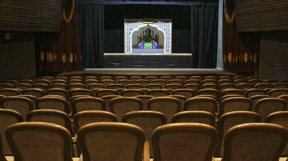 Зрительный зал Театра кукол имени Вольховского в Воронеже модернизируют за 9 млн рублей
