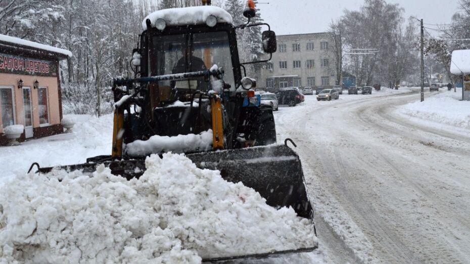 В Воронежской области объявили желтый уровень опасности из-за тумана и мокрого снега