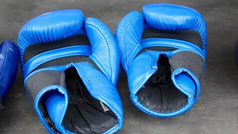 Воронеж остался без титульного боксерского боя