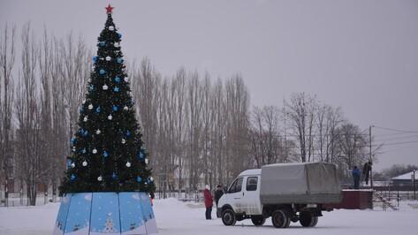 На главной площади Поворино установили елку