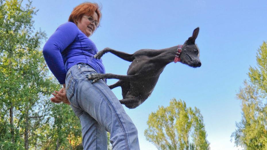 Воронежская дрессировщица и ее собака станцевали на чемпионате мира