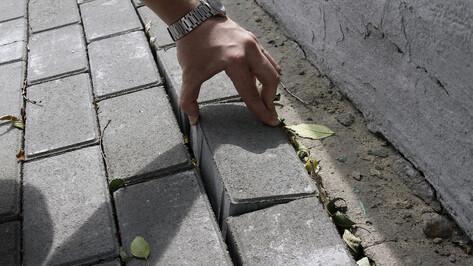 Контракт на устройство тротуара до воронежского парка «Дельфин» подорожал до 3 млн