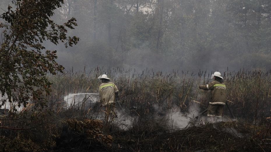 Появилось видео с места пожара в бобровском поселке Лушниковка