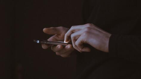 Аферист несколько часов «обрабатывал» воронежца по телефону и обогатился на 900 тыс рублей