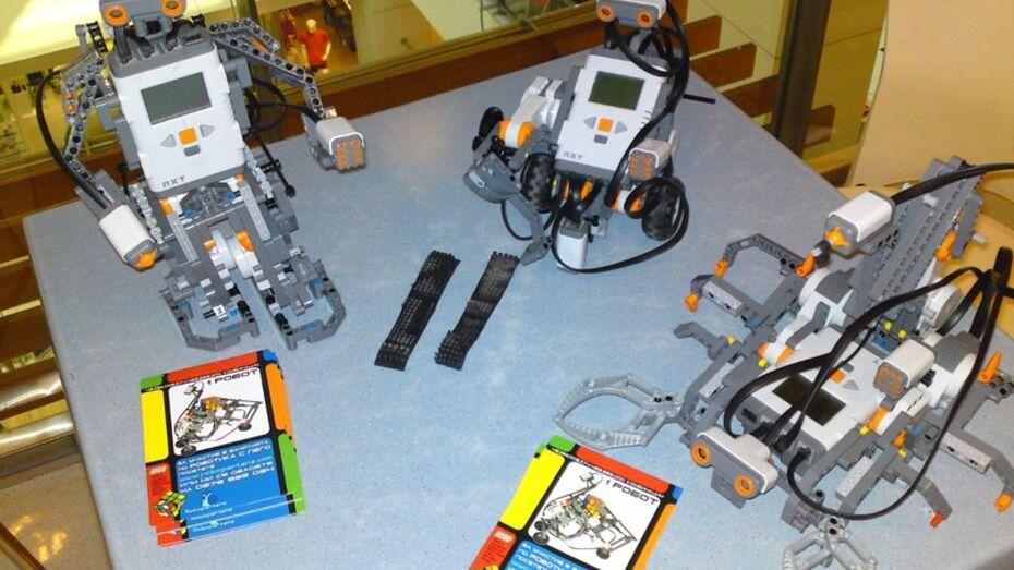 Воронежские школьники будут конструировать роботов
