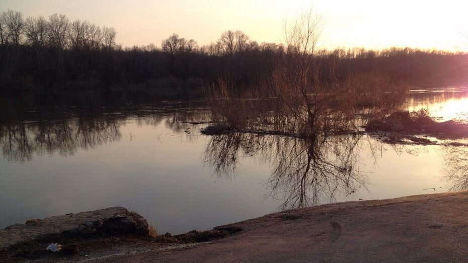 В Дону в районе Павловска спала вода