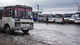 Дождались перемен. Как в Воронеже решается проблема пассажирских перевозок