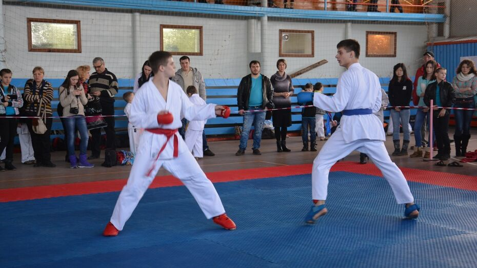 В Поворинском районе прошел второй открытый областной турнир по карате WKF